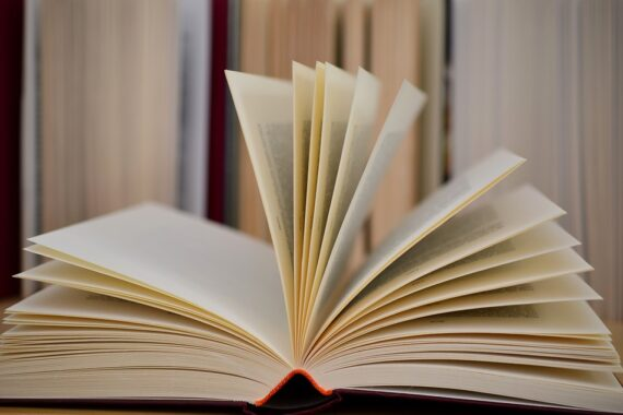 Welttag des Buches – Buchempfehlungen aus dem Team