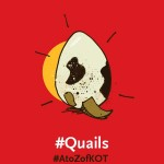 Kenya was taken by storm following a craze around quail farming. The fad saw Kenyans invest millions of shillings expecting great returns in a perceived scarcity. Tales of the fabled health benefits of eating quail eggs were touted by suppliers and traders on social media. The meat and eggs of quails overnight became a delicacy capturing the curiosity of the nation. No sooner had Kenyans began to throw money at the industry acquiring licenses, birds and eggs wholesale, than the quail bubble popped with the purported health benefits being debunked as myths and the actual market demand turning out to be grossly inflated. Quails remain symbolism for a fad or baseless trends in Kenyan digital society.